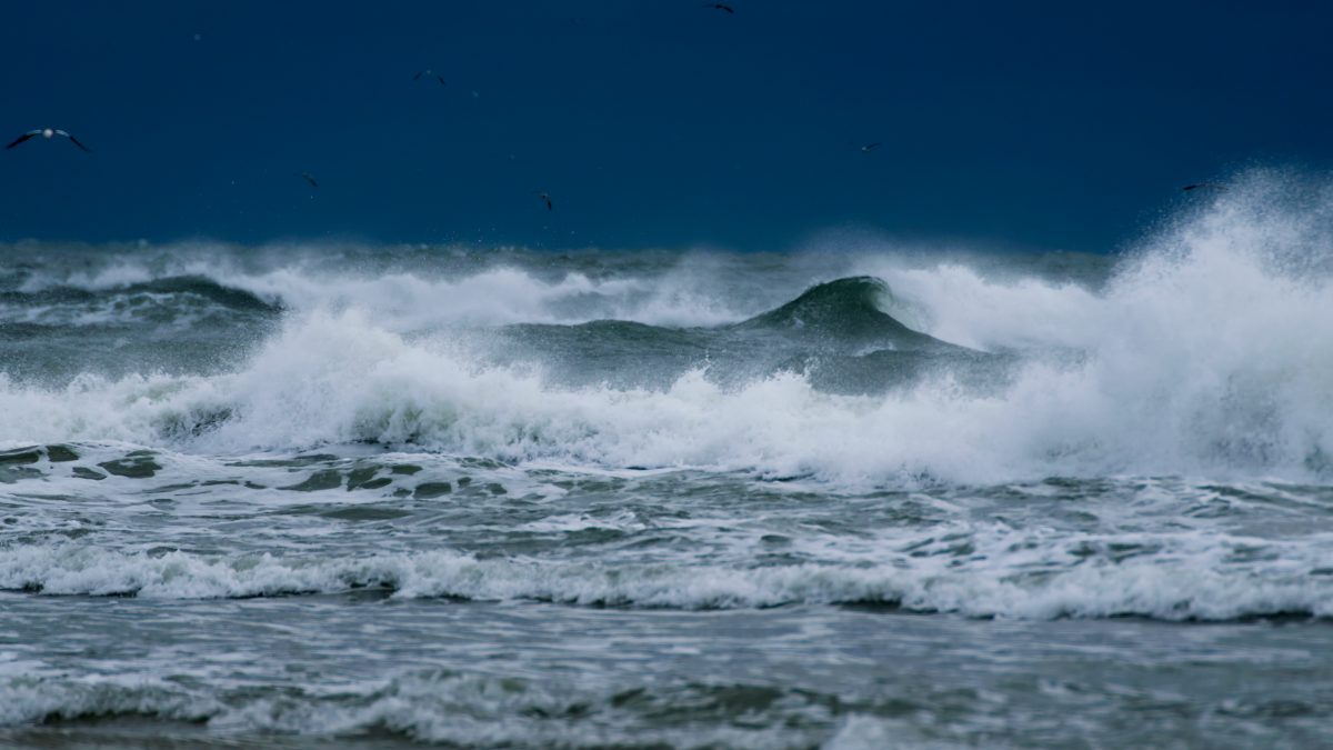 Guest Post: The Waves of Grief